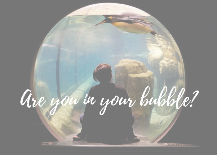 boy sitting inside an aquarium, looking up to a penguin, living in his own bubble, love is the answer