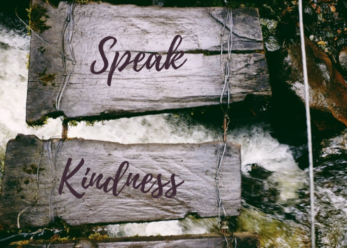 wood signs with the words speak and kindness, Why No One Hears You: Mindfulness and Intention