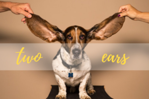 a man and a woman, holding a dog's long ears up, words displayed on image underneath ears, two ears, Why No One Hears You: Mindfulness and Intention
