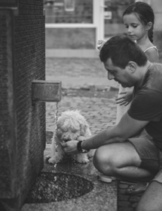 a dog is drinking water out of a man's hand, a little girl is standing next to the man, when body out of alignment, your pain is your biggest gift