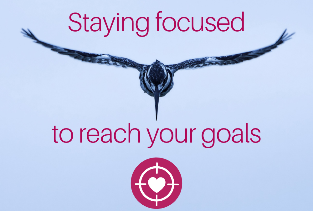 Staying Focused to Reach Your Goals
