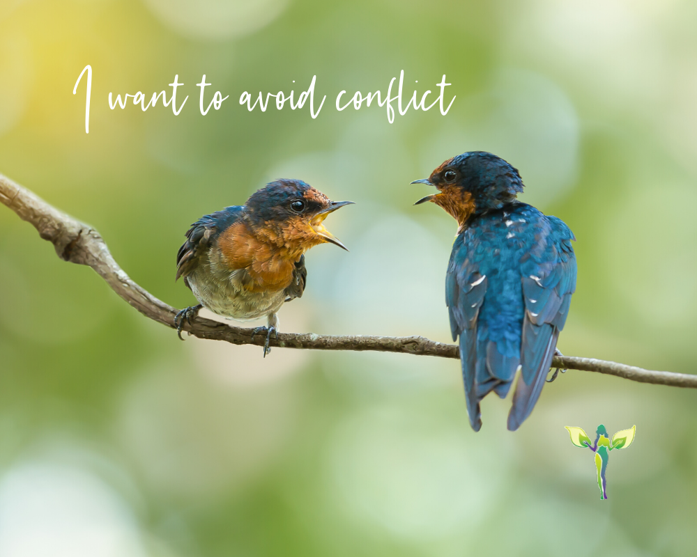 two birds sitting on two different tree branches, I avoid conflict, Pleasing People and Lying versus Being Honest and Authentic