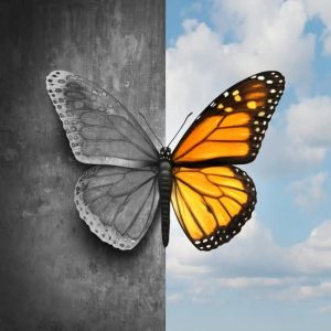 butterfly in black and white and color, on a house wall, in the blue sky, the effects of depression